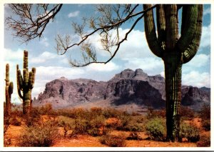Arizona Superstition Mountain With Giant Saguaro Cactus