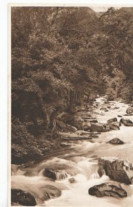 Devon Postcard - On The East Lyn - Lynmouth    ZZ3284
