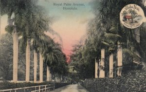 HONOLULU , Hawaii , 00-10s8 ; Royal Palm Ave nu ;  Aloha Nui