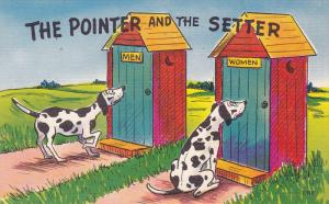 The Pointer and the Setter, Two Dogs in front of Men and Women Outhouses, 30-40s