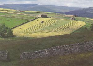 England Yorkshire Cutting Hay Wharfedale