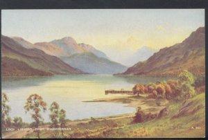 Scotland Postcard - Loch Lomond From Rowardennan  DC2230