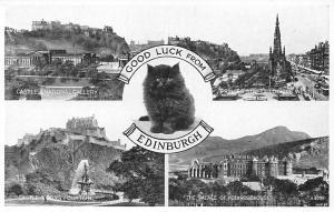 Scotland Edinburgh Black Kitten Cat Good Luck Princes Street Castle Fountain
