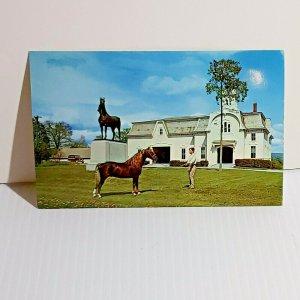 Vintage Postcard University of Vermont Morgan Horse Farm Weybridge VT 1978  759