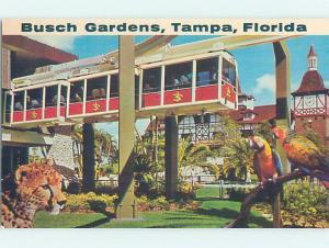 Pre-1980 BUSCH GARDENS Tampa Florida FL AF9722@