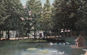 Michigan Detroit Scene In Palmer Park