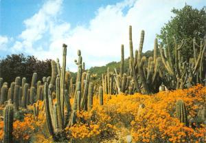 Spain Jardin Botanico Tropical Pinya de Rosa Blanes Sta Cristina Girona