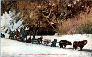 YUKON  DOG TEAM  Freighting  in  ALASKA   c1910s Mitchell  #1990   Postcard