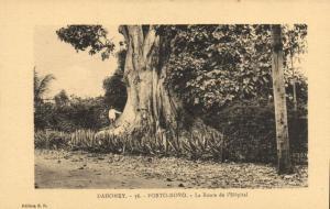 CPA Dahomey Afrique - Porto-Novo - Le Route de l'Hopital (86804)