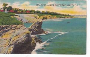 Rhode Island Seal Rock Along Cliff Walk 1958