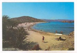 CRETE,  Greece , 50-70s   The coast of Vai : The Forest of Palm-trees