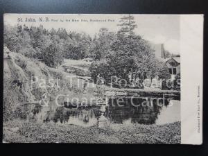 CANADA: St. John, N.B. Pool by the Bear Den, Rockwood Park, Old Postcard