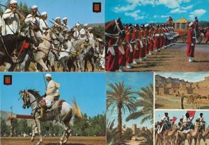 Morocco Hassan Military Mounted Riders 4x Postcard s