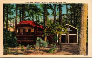 Postcard DE Delaware Car Amongst the Woods Trolley Rehoboth Beach Unposted