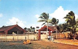 Maori Village Polynesian Cultural Center Tahiti Unused
