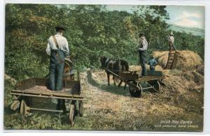 Irish Hay Carts Solid Wood Wheels Farming Ireland 1906 postcard