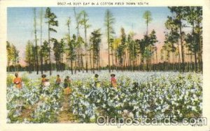 A cotton Field Down South Black Unused light crease top right and bottom righ...