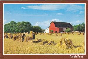An Amish Farm in Northern Indiana and Southern Michigan