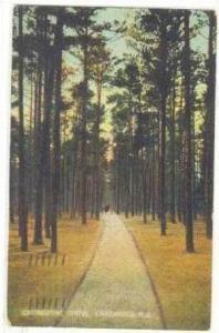Cathedral Drive, Lakewood, New Jersey, 1910 PU