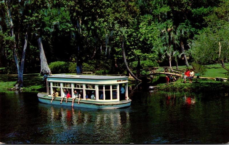 Florida Silver Springs Glass Bottom Boat Feeding Fish