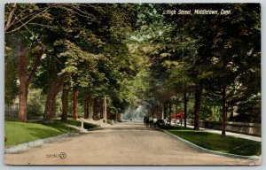 Middletown CT~Men Chat Near Horse & Buggy on Shady High Street~1909 Postcard