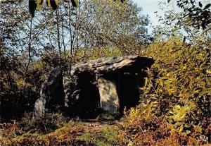 France Dolomen cache dans la Campagne bretonne, Carnac