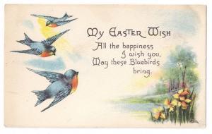 Robins Blue Birds A/S M Dulk Vintage Easter Postcard