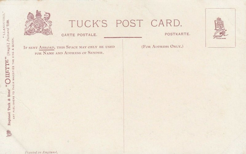 LLANDUDNO, Wales, UK, 1900-10s; A Rough Morning, AS; Corbley, TUCK 7199