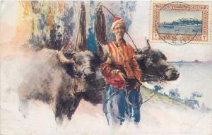 Turkey Constantinople Istanbul buffalo with cartman TCV stamp vintage postcard