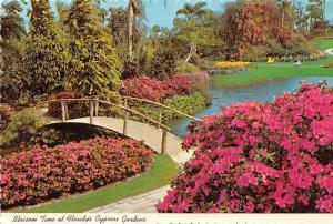 USA Florida Cypress Gardens Blossom Time Flowers Bridge