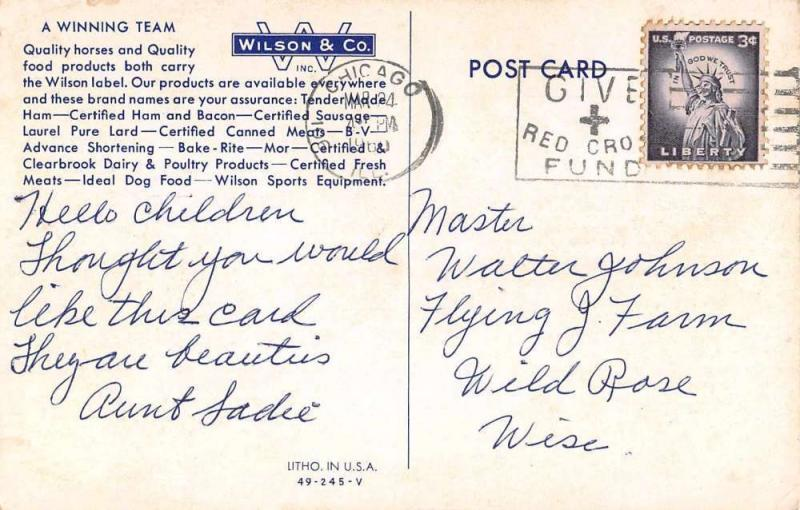 Chicago Illinois Wilson and Co  Advertising Antique Postcard J45861