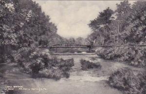Pennslyvania Mount Holly Springs Mill Bridge