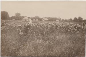 Iowa Ia Postcard KEOTA? Real Photo RPPC Farming Men E.E. Neal Keota Iowa