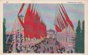 Avenue Of Flags Chicago World's Fair 1933