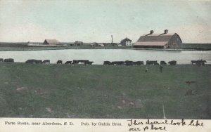ABERDEEN , South Dakota, 1907; Cattle, Farm Scene