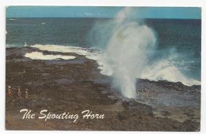 Hawaii Spouting Horn Kauai Salt Water Geyser Postcard
