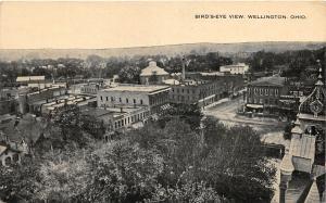 F64/ Wellington Ohio Postcard 1920 Birdseye View Stores Homes