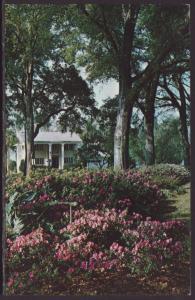 Lakefront Home,Central Florida Postcard BIN