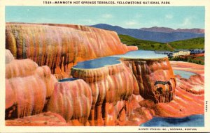Yellowstone National Park Mammoth Hot Springs Terraces Curteich