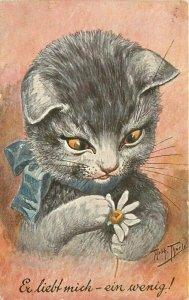 Artist impression Playful Cat Flower Art 1910 Postcard 20-12633