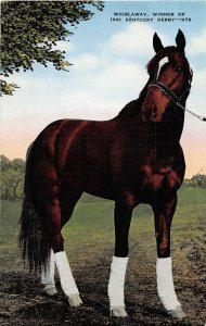 H76/ Louisville Kentucky Postcard Linen Whirlaway Derby Horse Champ 187