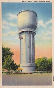 Minnesota Brainerd Water Tower Curteich