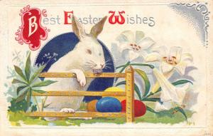 Easter~White Rabbit With Paws on Fence~Colored Eggs~Silver Filigree Emboss~1910