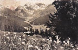 Switzerland Blick von der Clavadeler-Alp ob Davos auf Sertigal Mittaghorn Pla...