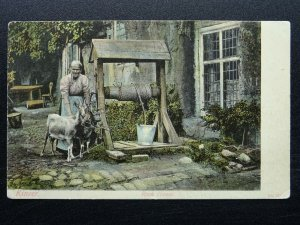 Staffordshire KINVER Rock House shows LADY & GOATS BY WATER WELL c1905 Postcard