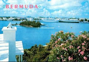 Bermuda Pink Oleanders and Cruise Ships At Hamilton