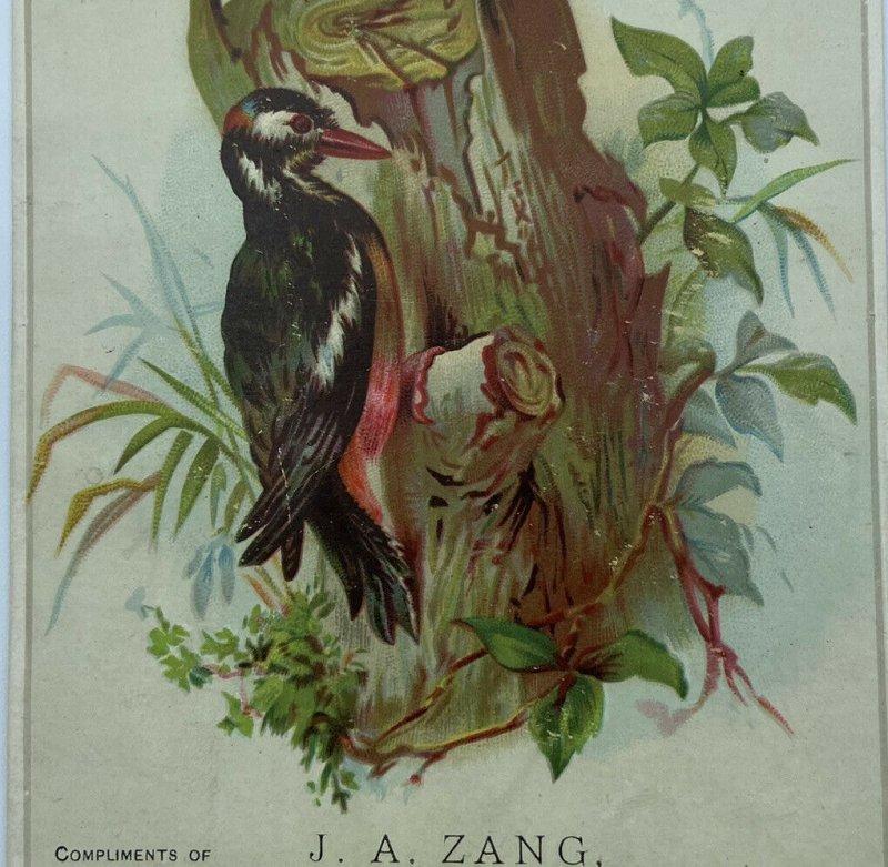 J A Zang Watchmaker Jeweler Optician Alliance Ohio OH Woodpecker Bird Trade Card