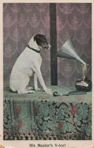Phonograph ; His Master's V-ice! , 1908