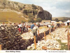 Postcard Dry Stone Walling, Kilnsey, North Yorkshire N63