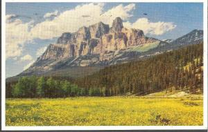 Banff Canada Mt Eisenhower Postcard